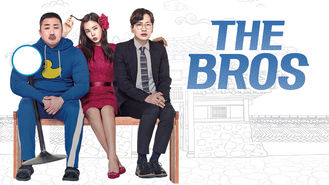 Netflix box art for The Bros